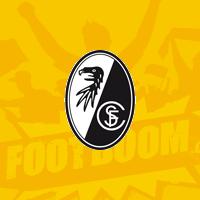 Фрайбург футбольный клуб фото