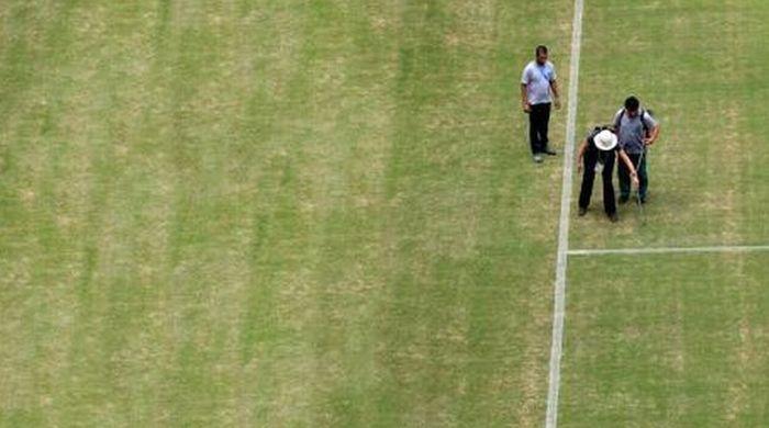 Перед матчем Италия – Англия красят траву! (Фотофакт)