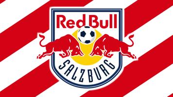 Ставим на финал Кубка Австрии