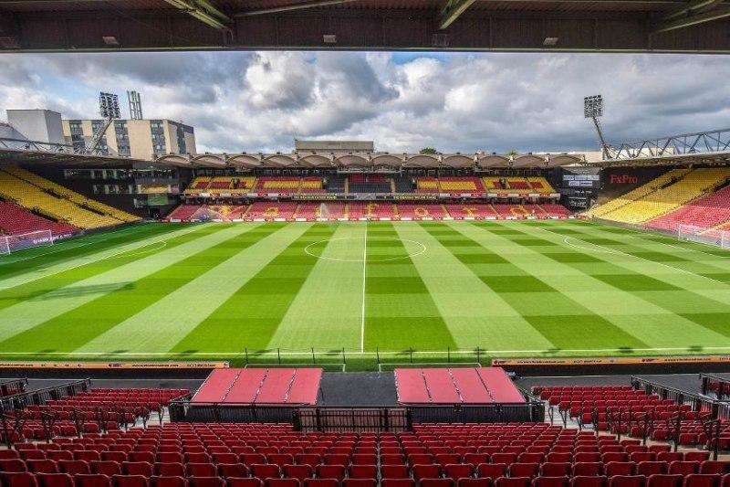 """Стадион """"Уотфорда"""" получил награду за лучший газон в АПЛ (Фото) - изображение 1"""