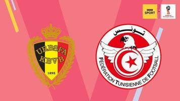 Бельгия - Тунис: прогноз Марка Лоуренсона