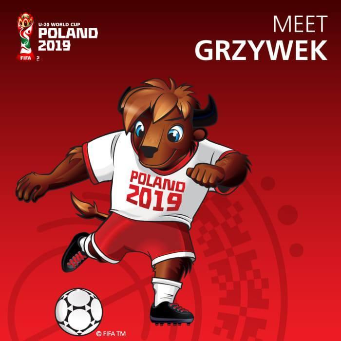 Чемпионат мира - 2019 (U-20). Анонс - изображение 1