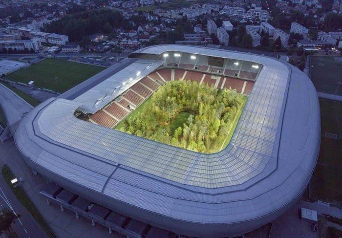 """Фото дня: 30-тысячный стадион, """"заселенный"""" лесом - изображение 2"""