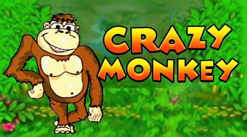 Играть в казино без регистрации обезьянка бесплатные все игровые автоматы