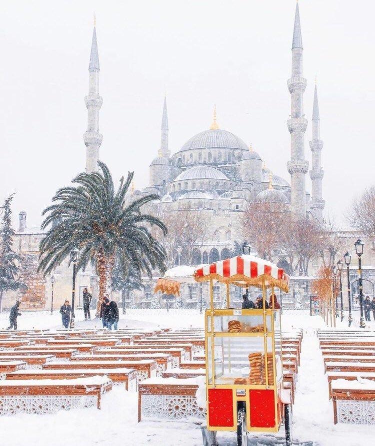 """Маскировка высшего уровня: снимки из Турции стали """"вирусными"""" в соцсетях (+Фото) - изображение 1"""